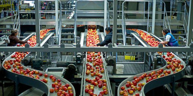 Optimal-Value-Systems-Empresa-de-Automatizacion-Industrial-Planeacion-y-Programacion-Avanzada-de-la-Produccion-Industria-Alimentos-001-compressor